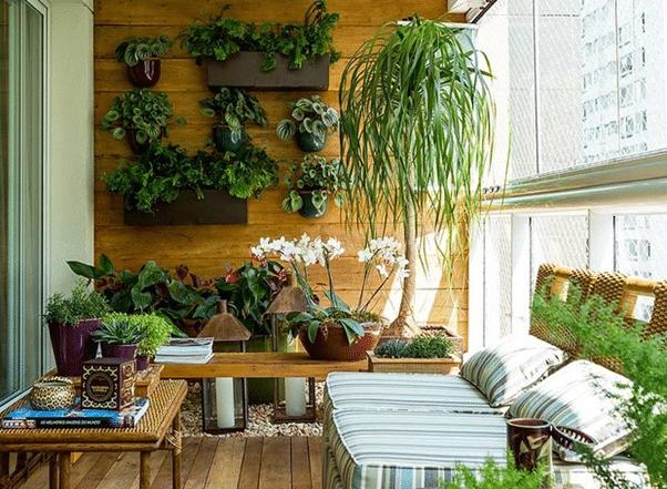 varanda zen planta